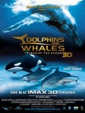 Dolphins and Whales - Tribes of the Ocean 3D
